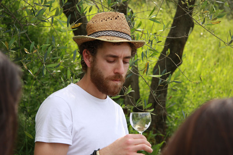 Wine tour in Tuscany with Luca